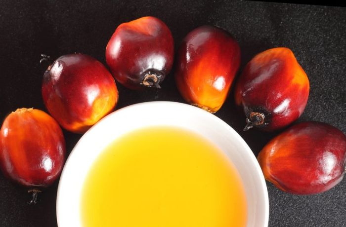 olejek z palmy winnej